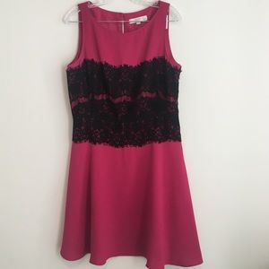 LOFT Pink Dress with black lace bodice detail